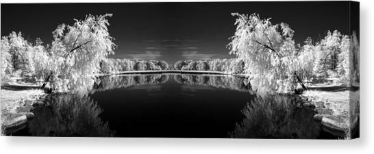 Infrared Reflections Canvas Print