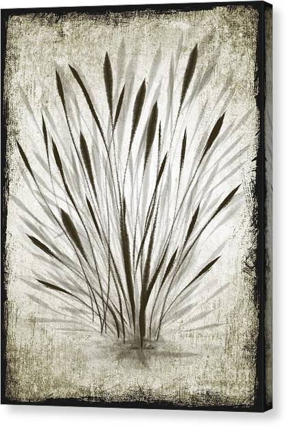 Canvas Print featuring the drawing Ink Grass by Ivana Westin