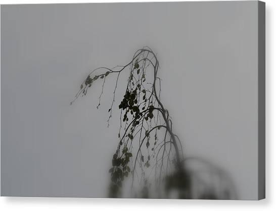 Innner  Mist Canvas Print