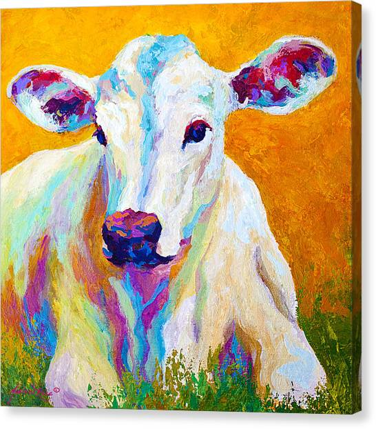 Cow Farms Canvas Print - Innocence by Marion Rose