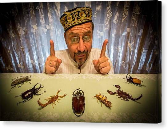 Beetles Canvas Print - Insect Whisperer by Tom R. Grabuschnigg (tomtitan)