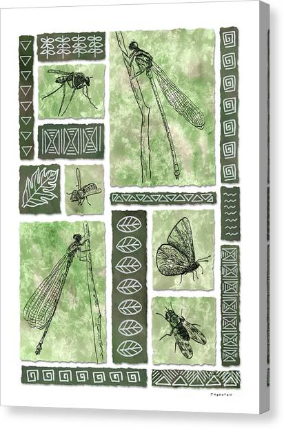 Insects Of Hawaii II Canvas Print