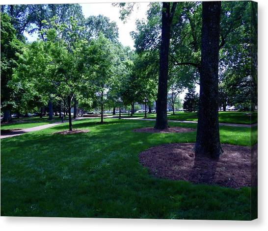 University Of Mississippi Ole Miss Canvas Print - Inside The Grove At Ole Miss by Terry Cobb