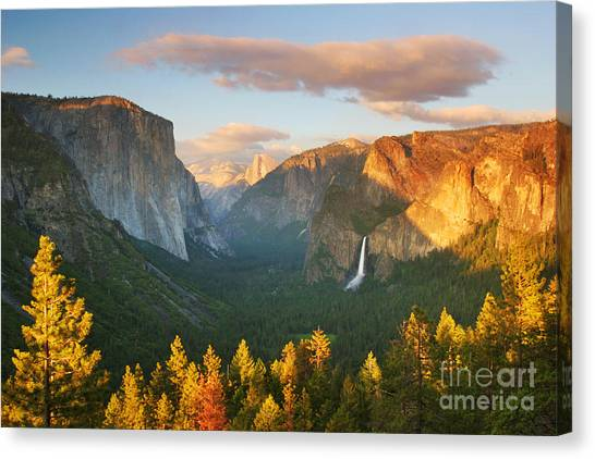 Yosemite Falls Canvas Print - Inspiration Point Yosemite by Buck Forester