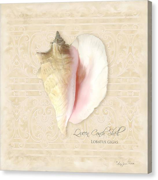 Conch Shells Canvas Print - Inspired Coast I  - Queen Conch Shell Loratus Gigas by Audrey Jeanne Roberts