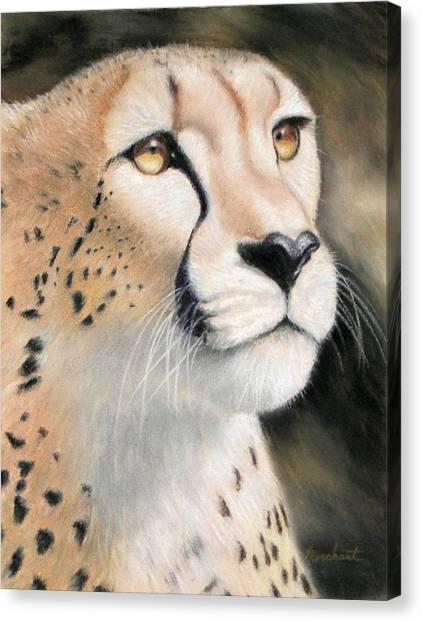 Intensity - Cheetah Canvas Print