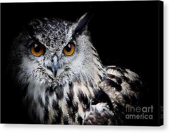 Intensity Canvas Print