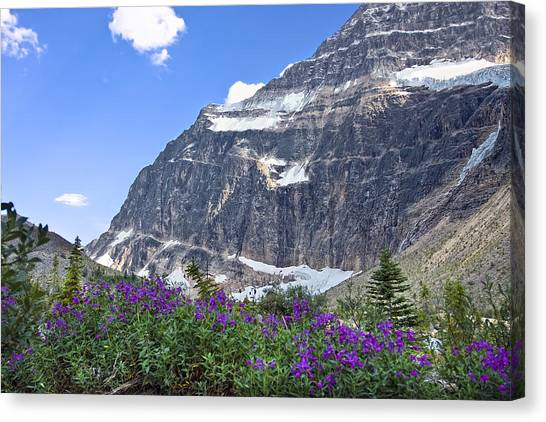 Interpretive Apps In The Canadian Rockies Canvas Print