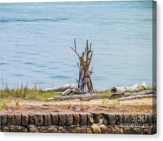 Intertwined Thoughts By The Ocean Canvas Print