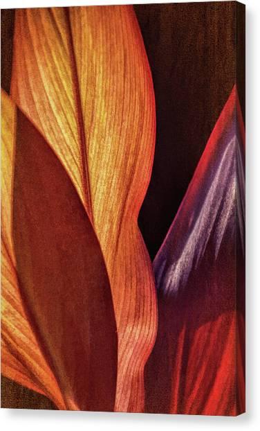 Interweaving Leaves I Canvas Print