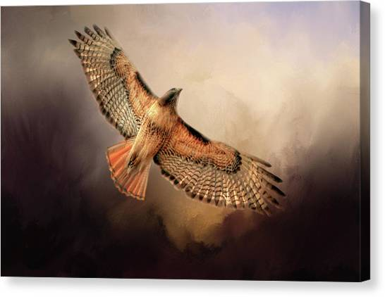 Buzzards Canvas Print - Into The Light by Donna Kennedy