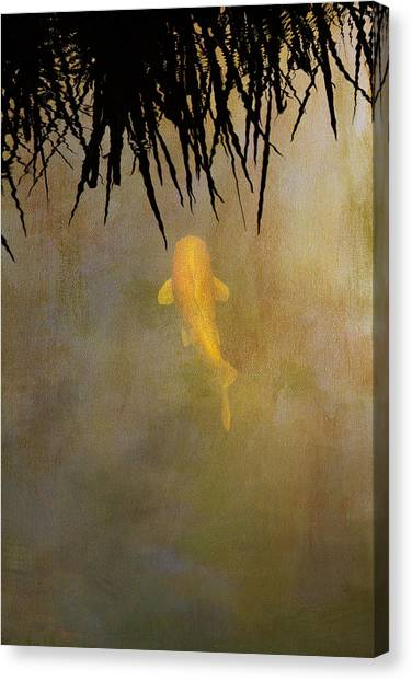 Koi Canvas Print - Into The Rushes by Rebecca Cozart