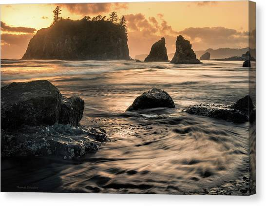 Into The Sea - Ruby Beach Canvas Print by T-S Fine Art Landscape Photography