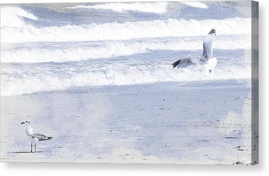 Into The Waves Canvas Print by JAMART Photography