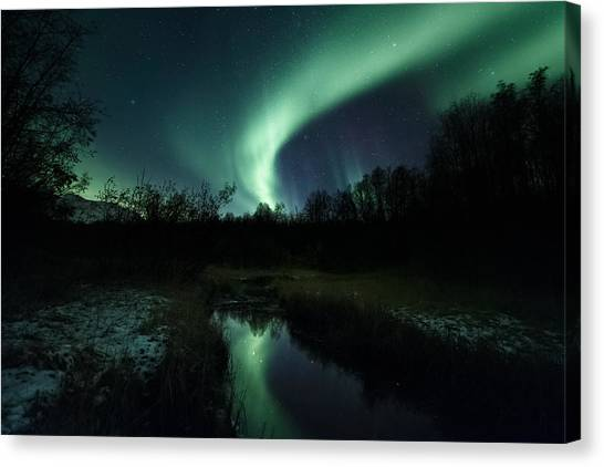 Aurora Borealis Canvas Print - Into The Woods by Tor-Ivar Naess