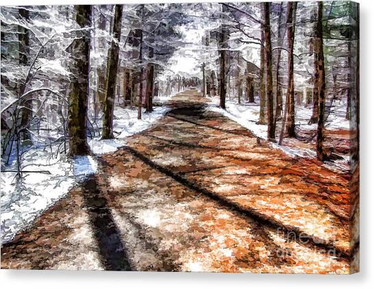 Into Winter Canvas Print