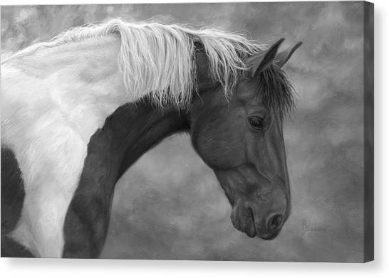 Black and white horse canvas print intrigued black and white by lucie bilodeau