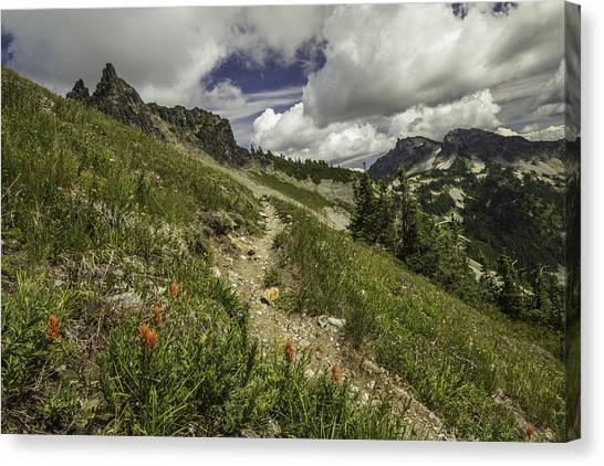Inviting Trail Canvas Print