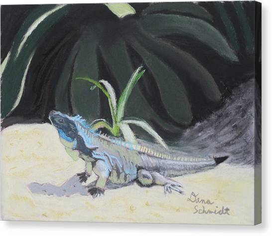 Iquana Lizard At Sarasota Jungle Canvas Print
