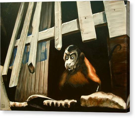Iquitos Monkey Canvas Print by Chris  Slaymaker