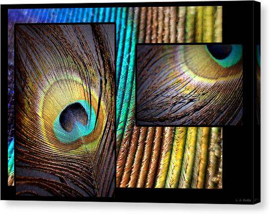 Iridescent Beauty Canvas Print