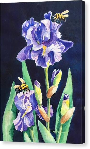 Iris And Bees Canvas Print