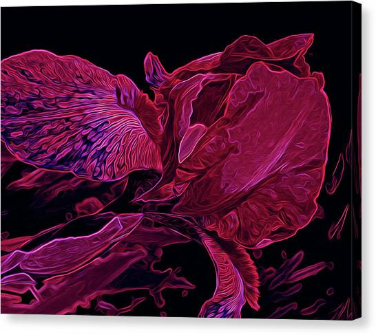 Iris Deep Red Glow Canvas Print
