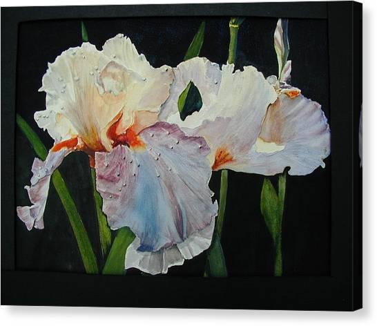 Iris Canvas Print by Dwight Williams