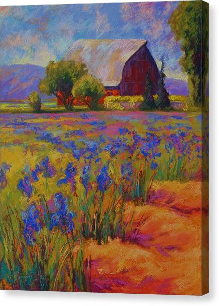 Irises Canvas Print - Iris Field by Marion Rose