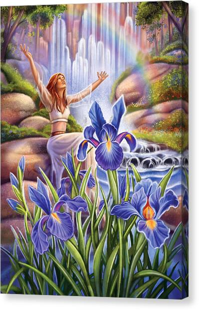 Iris - Fine Tune Canvas Print