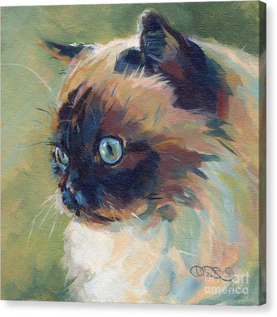Himalayan Cats Canvas Print - Iris II by Kimberly Santini