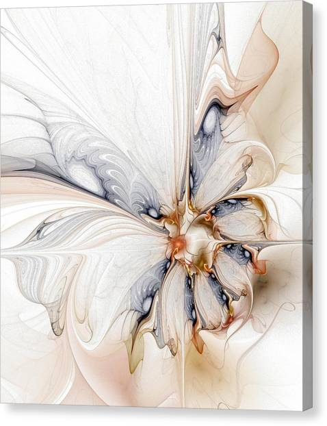 Iris Canvas Print by Amanda Moore