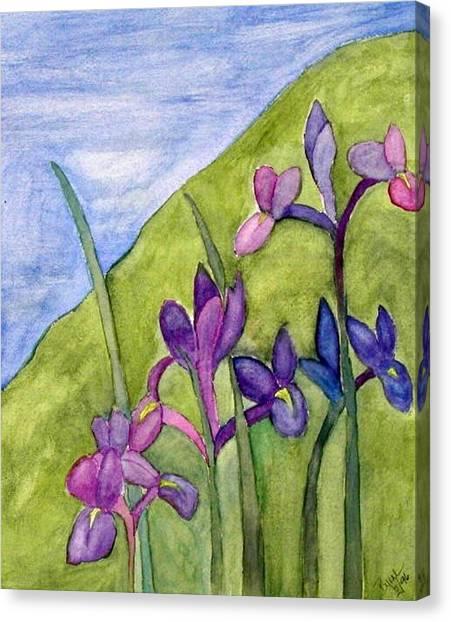Iris Meadow Canvas Print by Margie  Byrne