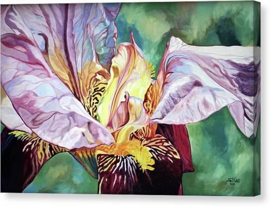 Iris Passion 1993 Canvas Print
