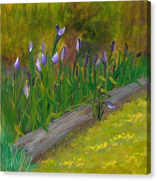 Iris Procession Canvas Print by Wanda Pepin