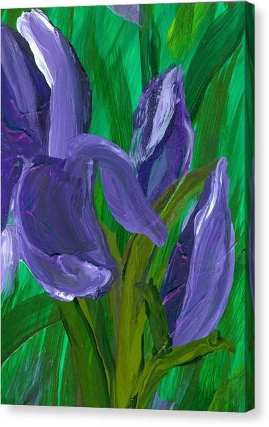 Iris Up Close And Personal Canvas Print by Wanda Pepin