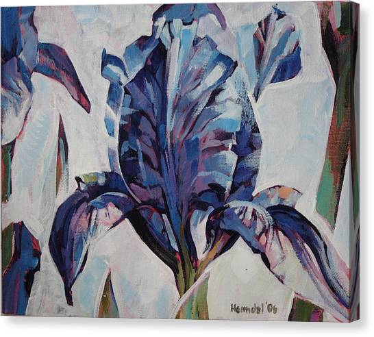Iris Winter Canvas Print