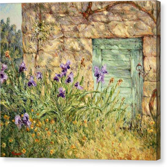 Irises At The Old Barn Canvas Print