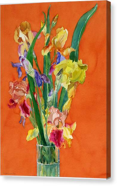 Irises Canvas Print by Martha Zausmer paul