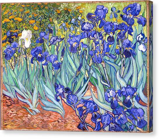 Canvas Print featuring the painting Irises by Van Gogh