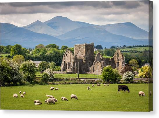 Irish Country Side Canvas Print