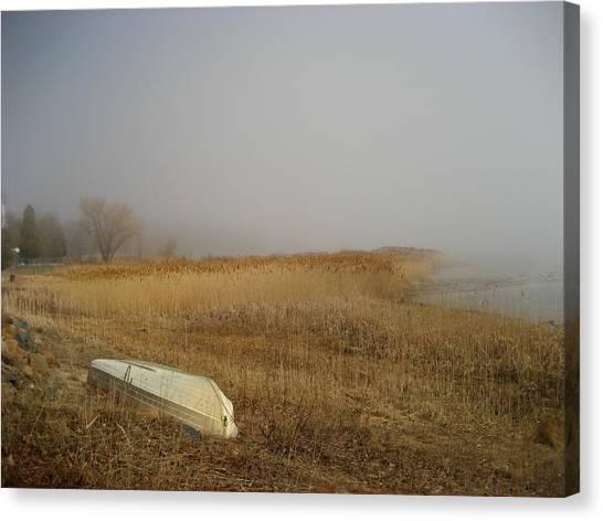 Irish Mist Canvas Print