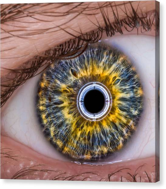 iRobot Eye v2.o Canvas Print