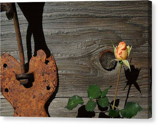Iron Flower Canvas Print by Mark Stevenson