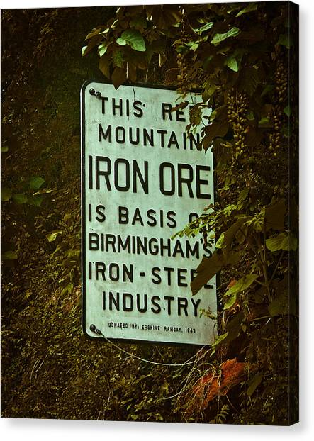 Iron Ore Seam Canvas Print