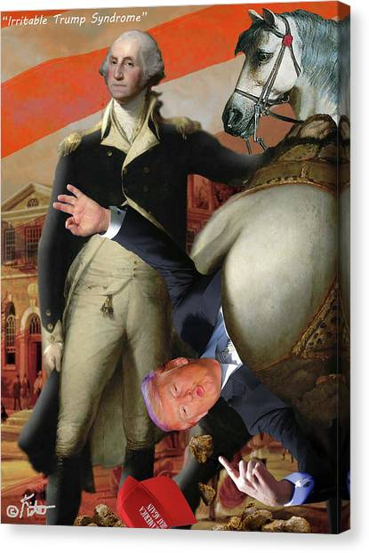 Funny Horses Canvas Print - Irritable Trump Syndrome by Barry Kite
