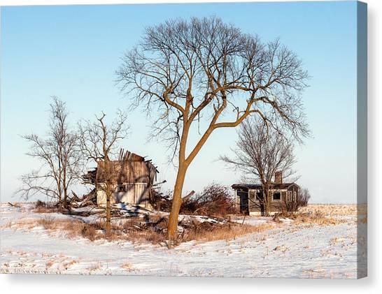 Fallen Tree Canvas Print - Island In The Snow by Todd Klassy