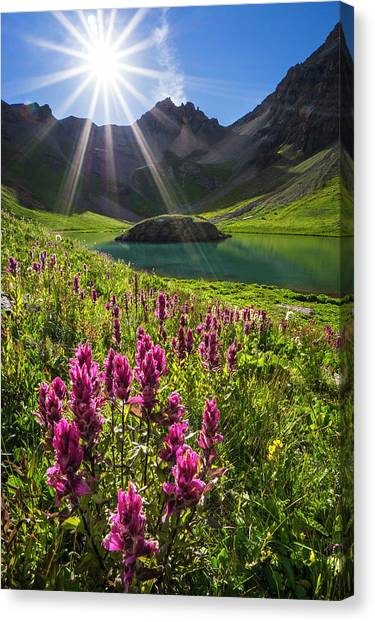 Island Lake Flowers Canvas Print