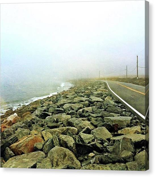 Orchids Canvas Print - Island Life #secondbeach #ri #fog by Thirsty Orchid