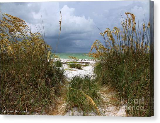 Island Trail Out To The Beach Canvas Print